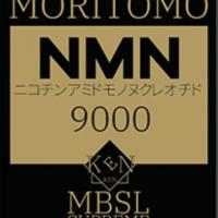 nmn9000logo2